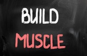 GOMAD can help build muscle